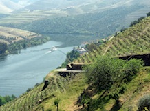 Douro Wine Tour with a Sailing Cruise in Douro River – 5-Day experience