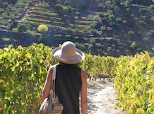 Quinta do Panascal - Guided Tours + Wine Tasting