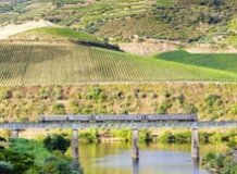 Discover Douro Valley by Train – Full Day Experience